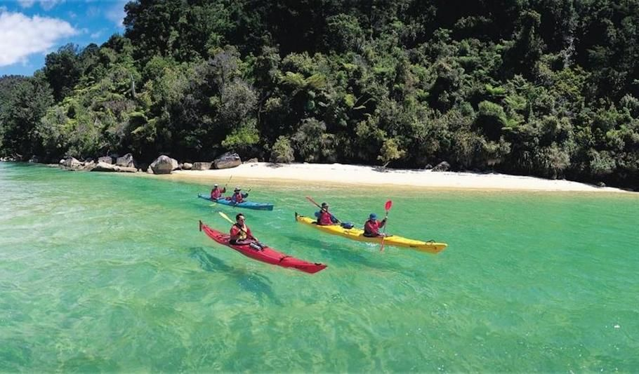 Beaches, Bays and Seals Guided Sea Kayaking Trip including picnic lunch