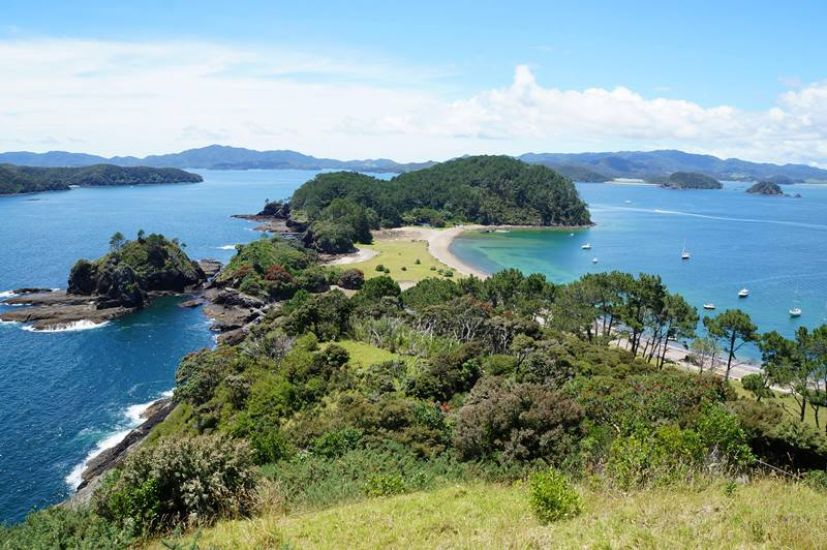 Auckland to Paihia, Bay of Islands